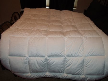 Pinzon Basics Overfilled Ultra Soft Microplush Queen Mattress