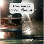 Awesome homemade oven cleaner!